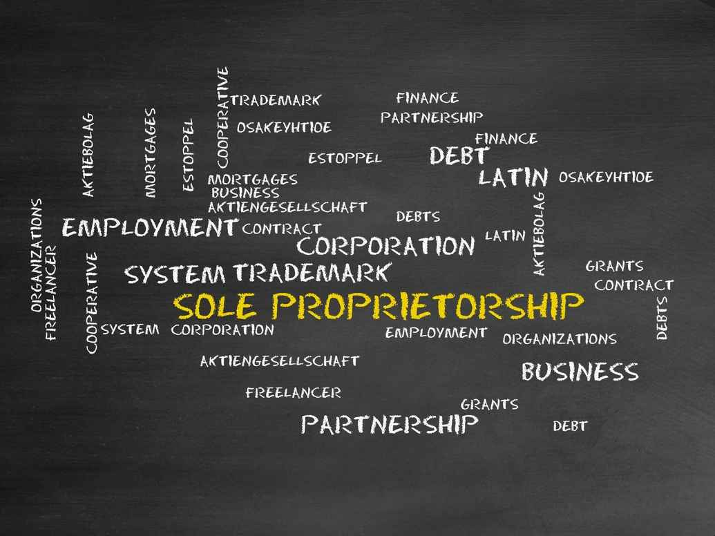 what is the difference between an individual and a sole proprietor?