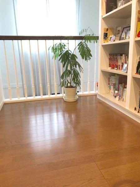 floor畳を敷く前