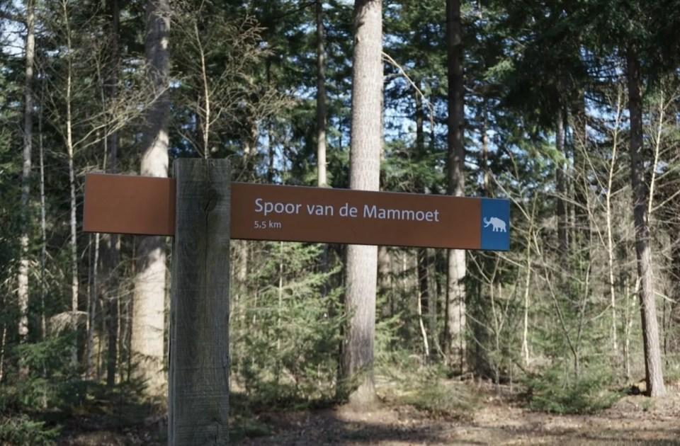 spoor van de mammoet wandeling