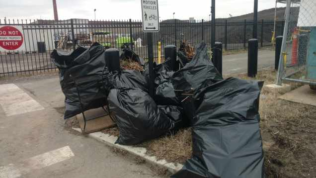 A successful cleanup effort means a lot of trash gets piled up for removal.