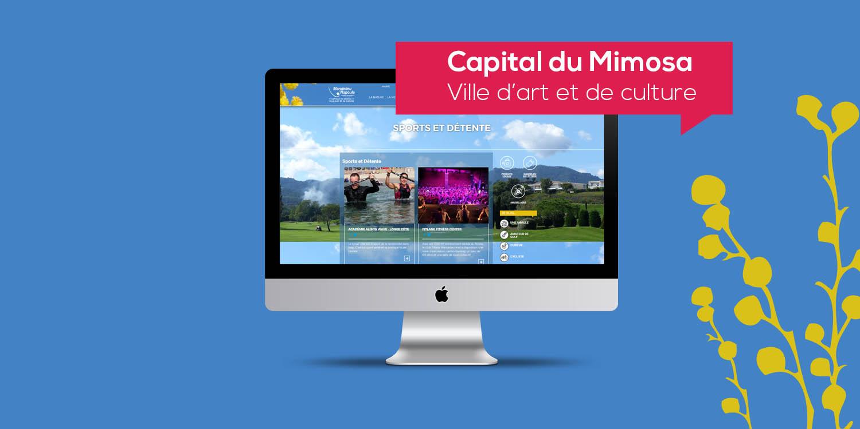 Mandelieu - Création de site web - Agence Wacan