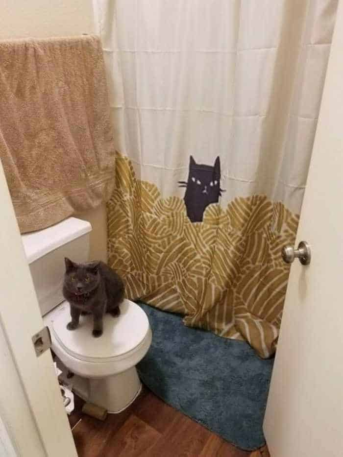31 Funny Creative Shower Curtains That Will Make Your Day -16