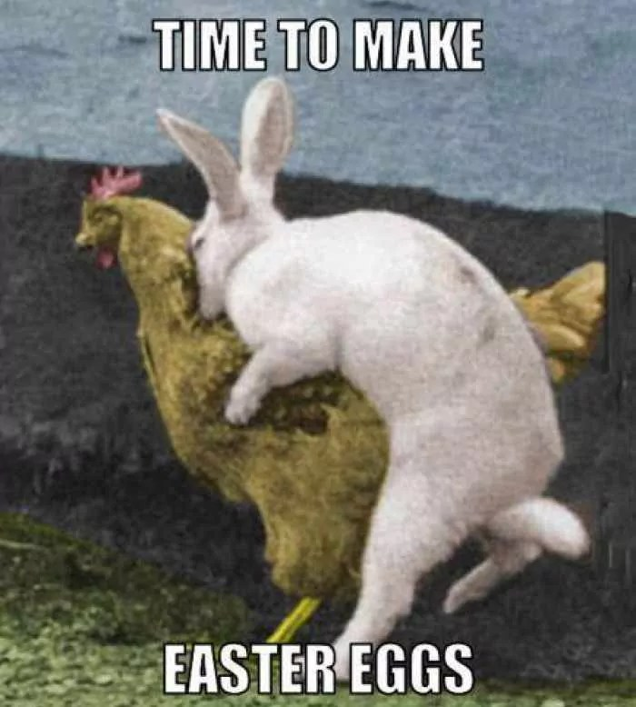 52 Funny Easter Memes That Will Make Your Holiday -52