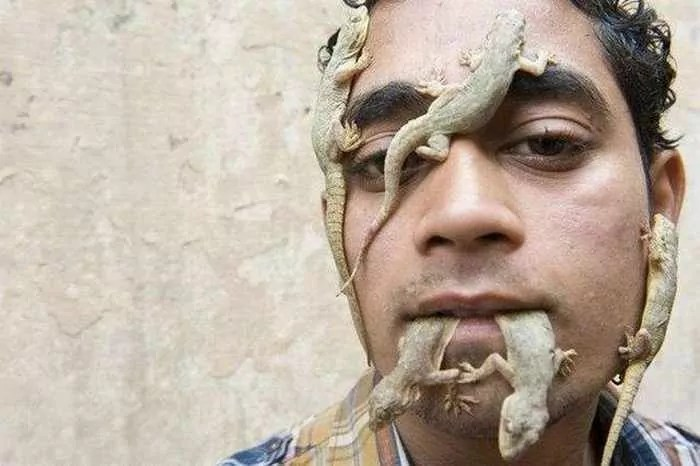 Navratan Harsh : Crazy Lizard Man From India_04