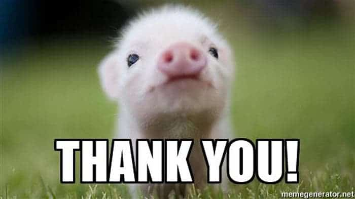 thank you meme 01?resize=700%2C393&ssl=1 46 thank you meme pictures that will make your day