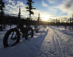 Fat tire bike on groomed trail in Willow Alaska