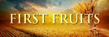 380x130_firstfruits
