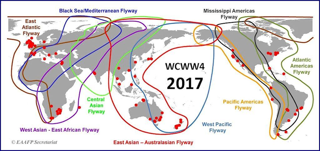 Wader Conservation World Watch