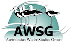 Latest satellite tagging news from AWSG