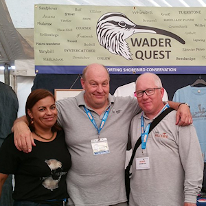 Wader Quest at Birdfair and Falsterbo