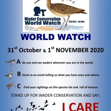 It's here! WCWW7 is this weekend – let's get wader watching!