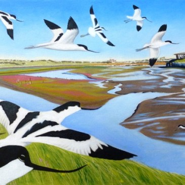 Global Bird Day – Join Team Wader Quest