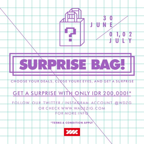 Surplus bag.cdr