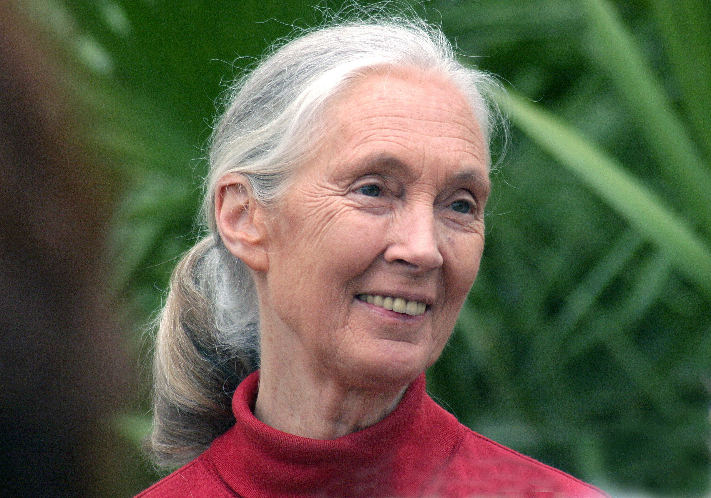 Public Lecture By Jane Goodall