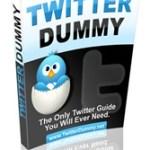 Twitter Dummy Guide