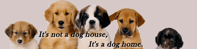 It's not a dog house, it's a dog home.