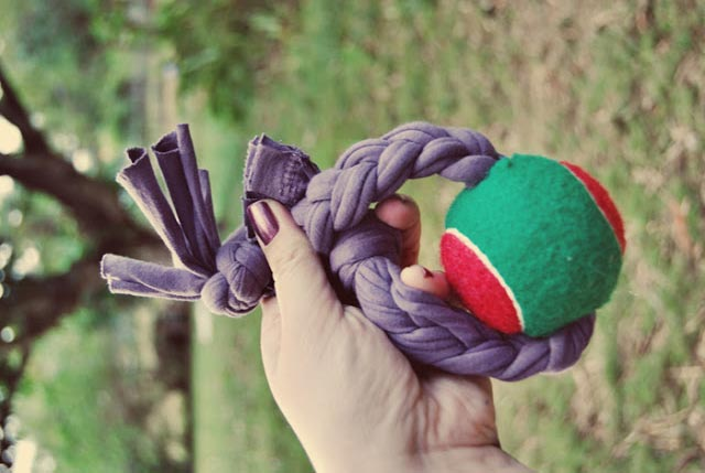 Tennis Ball DIY Dog Toy