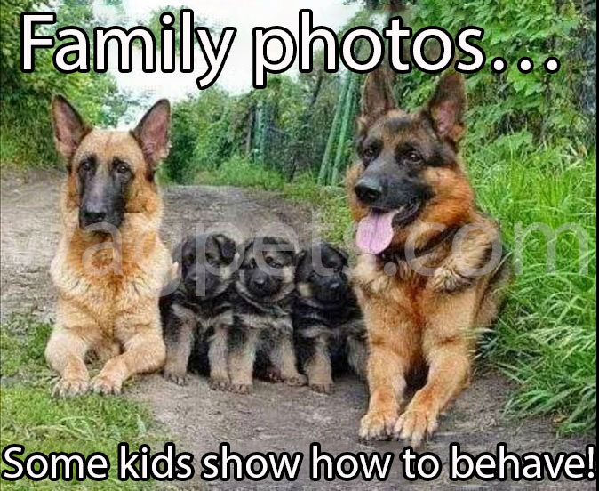 Family photos… Some kids show how to behave!