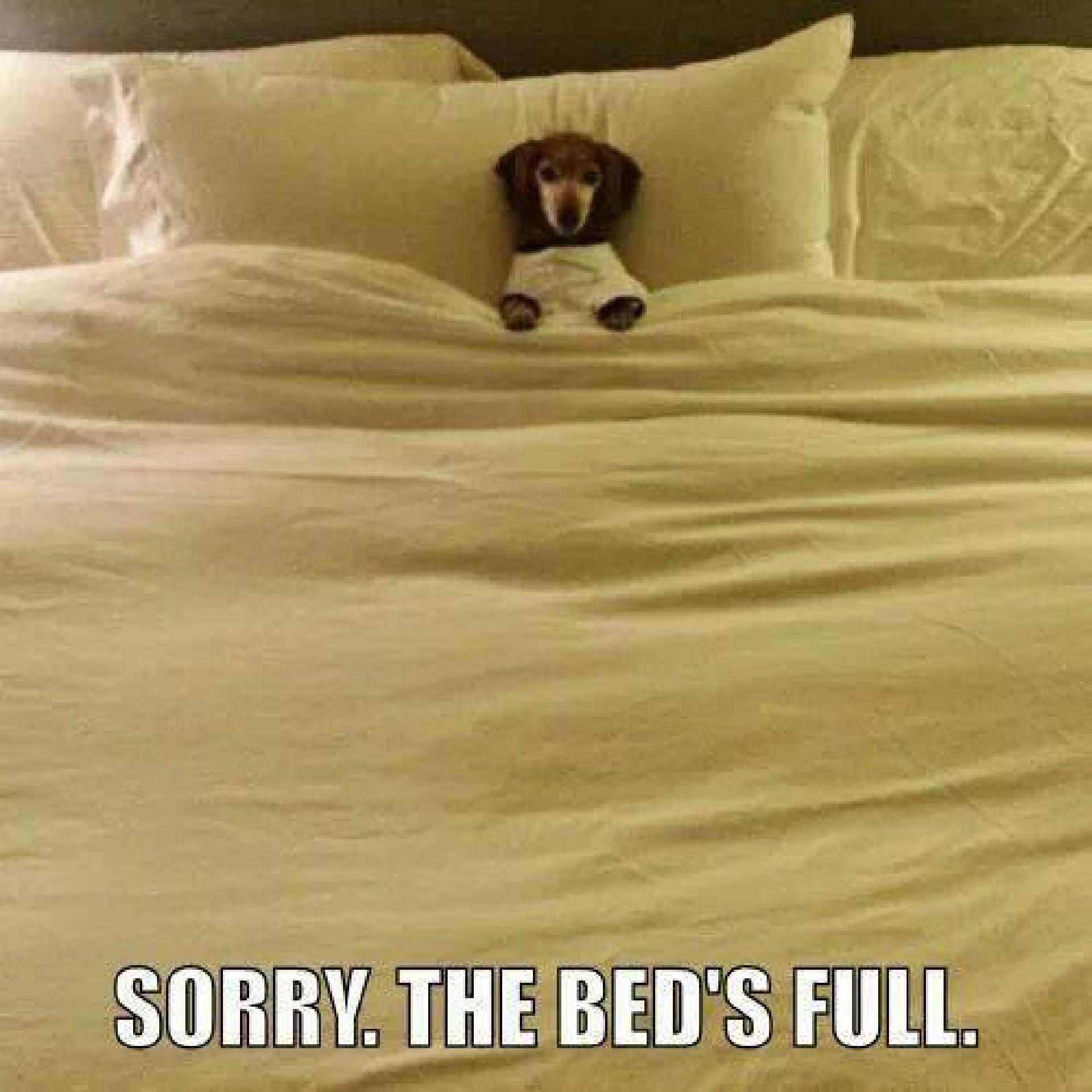 Sorry. The bed's full.
