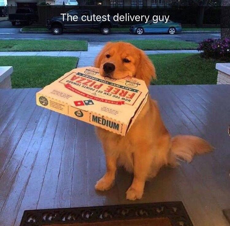 The cutest delivery guy