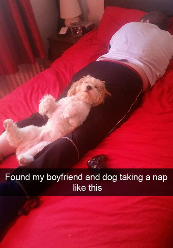 Found my boyfriend and dog taking a nap like this
