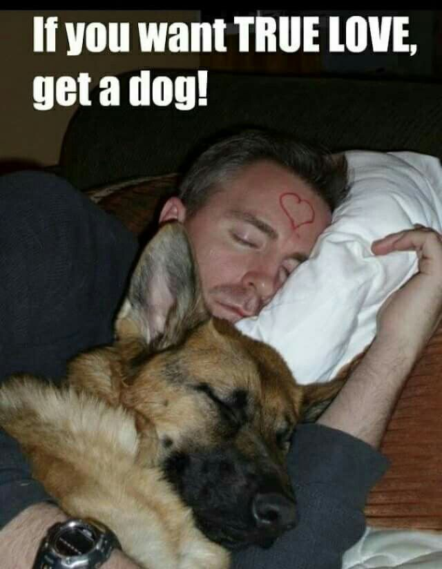 If you want TRUE LOVE, get a dog!