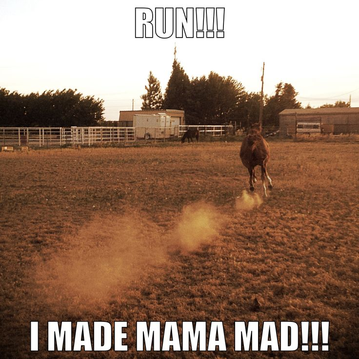 Run!!! I made mama mad!!!