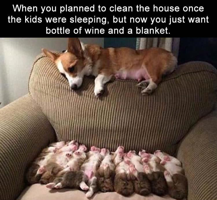 When you planned to clean the house once the kids were sleeping, but now you just want bottle of wine and a blanket.