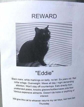 """Reward """"Eddie"""""""