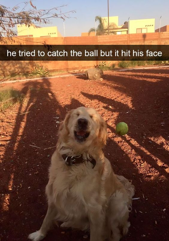 He tried to catch the ball but it hit his face