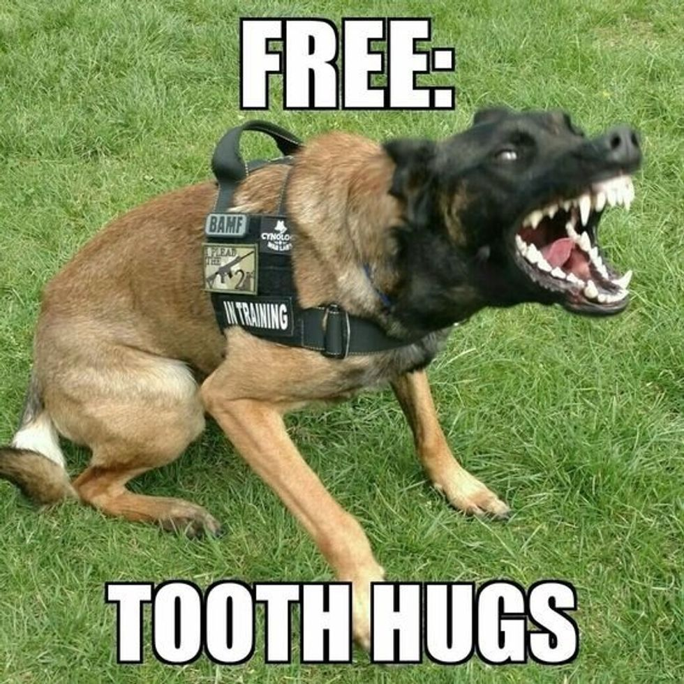 Free: tooth hugs