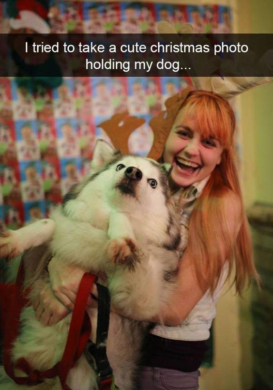 I tried to take a cute christmas photo holding my dog…
