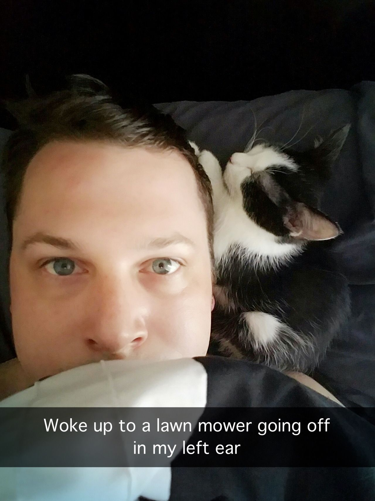 Woke up to a lawn mower going off in my left ear
