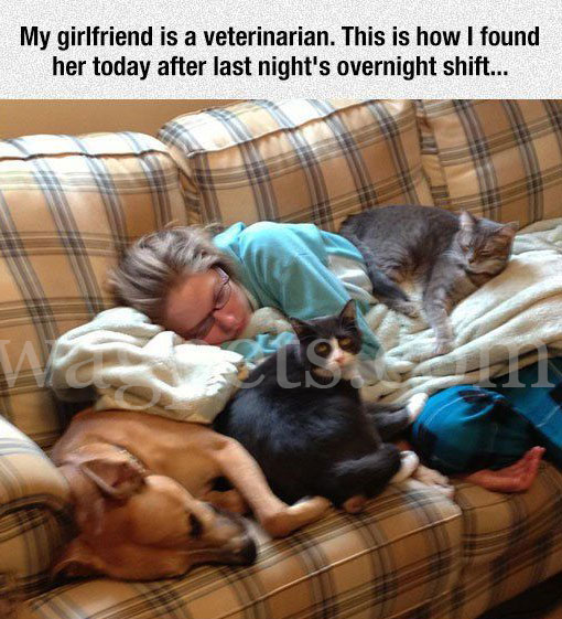 My girlfriend is a veterinarian. This how I found her today after last night's overnight shift…