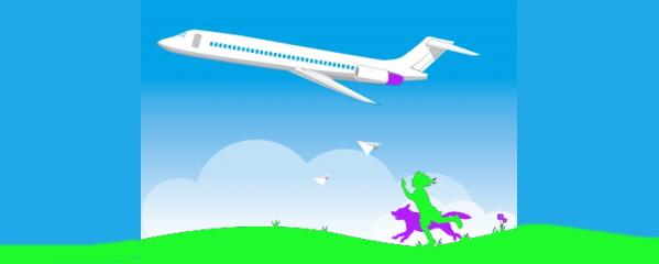 dog news on flying