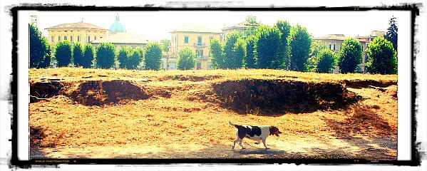 Lucca dog friendly garden wall walk