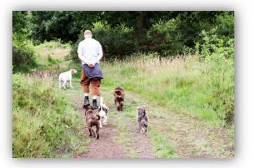 Ross the dog walker