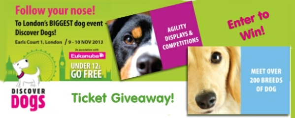 discover dogs free tickets