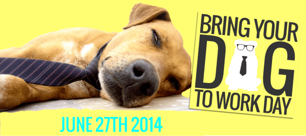 bring your dog to work day uk event cover