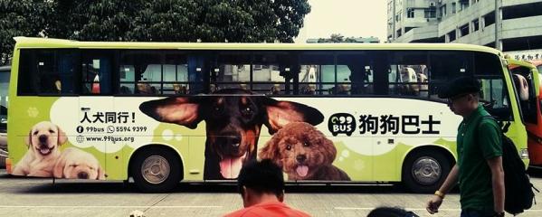 Hong Kong Pet Bus