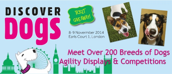 discover dogs 2014 ticket giveaway