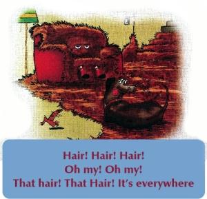 doggy hair inside1