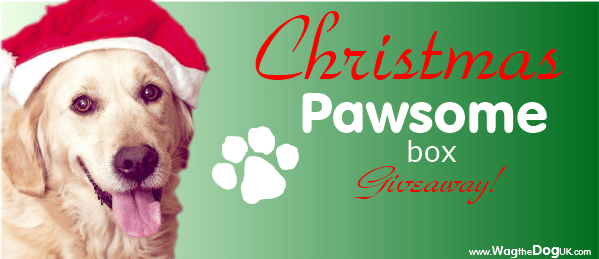 enter to win pawsomebox christmas giveaway