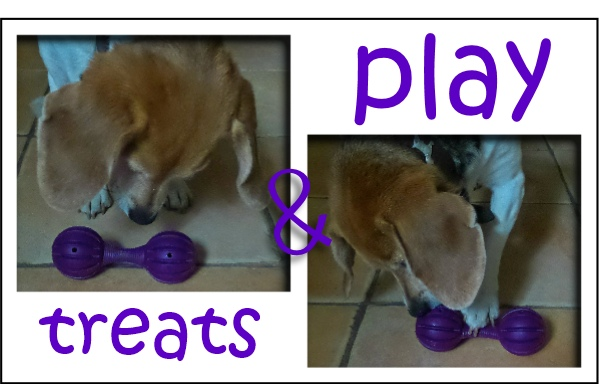 bark beats toy selection