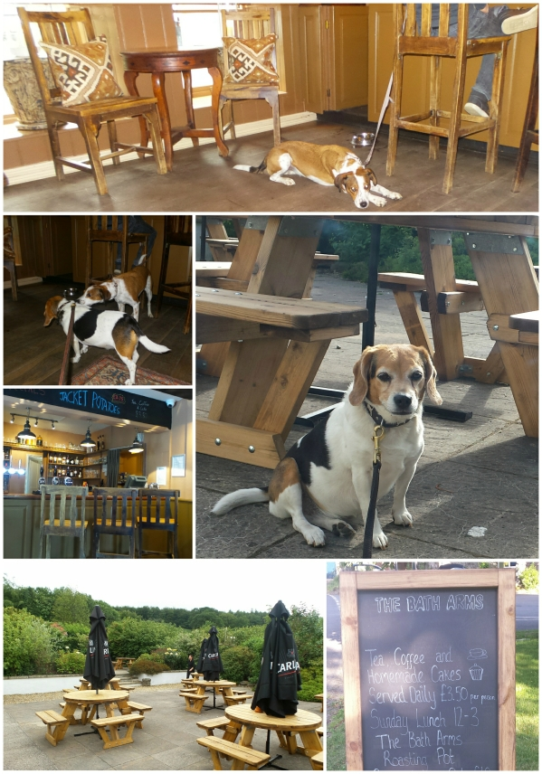 dog friendly dining options uk