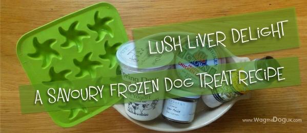 frozen dog treat recipe cover