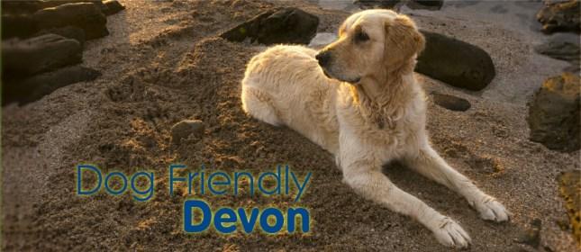 dog friendly devon cover