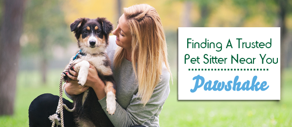 pet sitter cover
