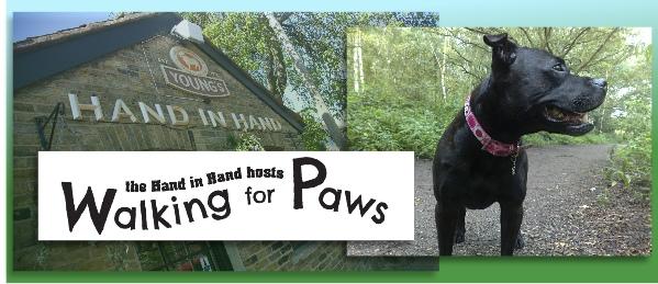 dog walk wimbledon cover