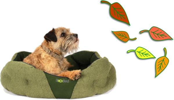 Autumn Dog Essentials bed